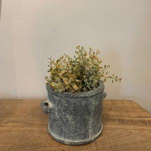 planter Brynxz