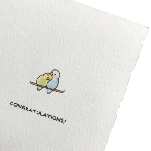 Congratulations Budgies